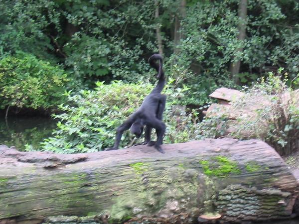Emmen Dierenpark 2004