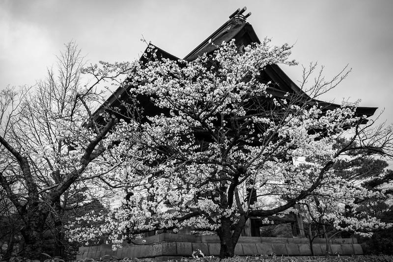 Nagano  12042013 004.jpg
