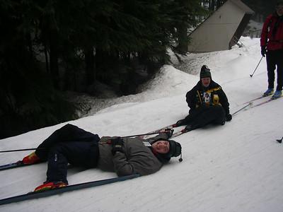 Skihawks
