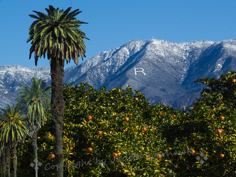 Redlands Mountain View