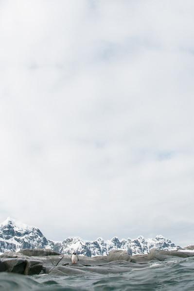 Antarctica 2015 (11 of 99).jpg