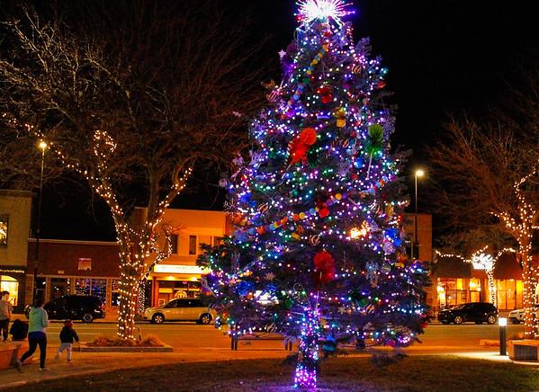 Wyandotte Christmas Tree 2020