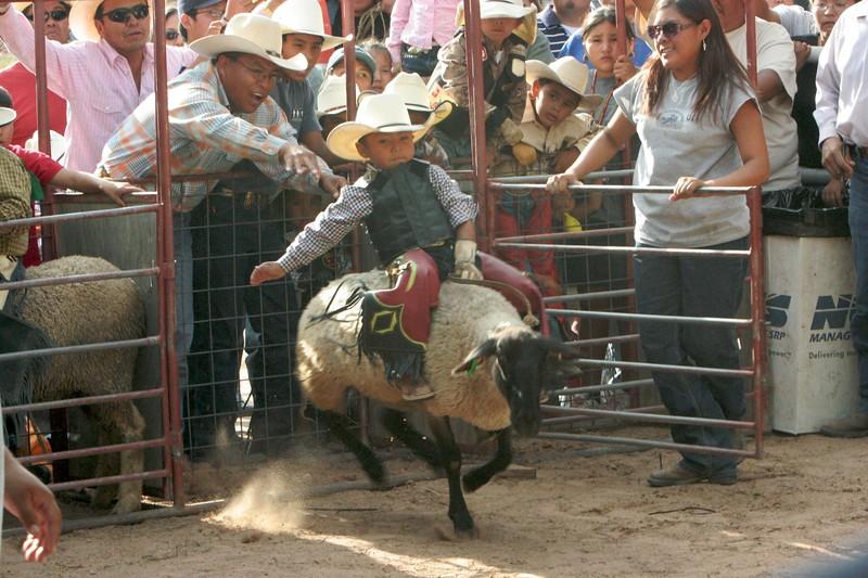 Rodeo  1153.jpg