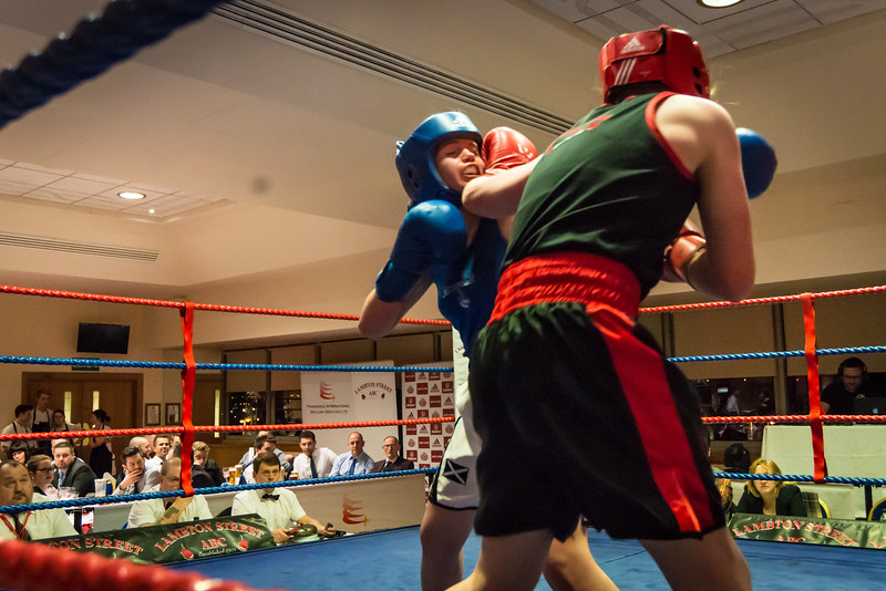 -Boxing Event March 5 2016Boxing Event March 5 2016-12830283.jpg
