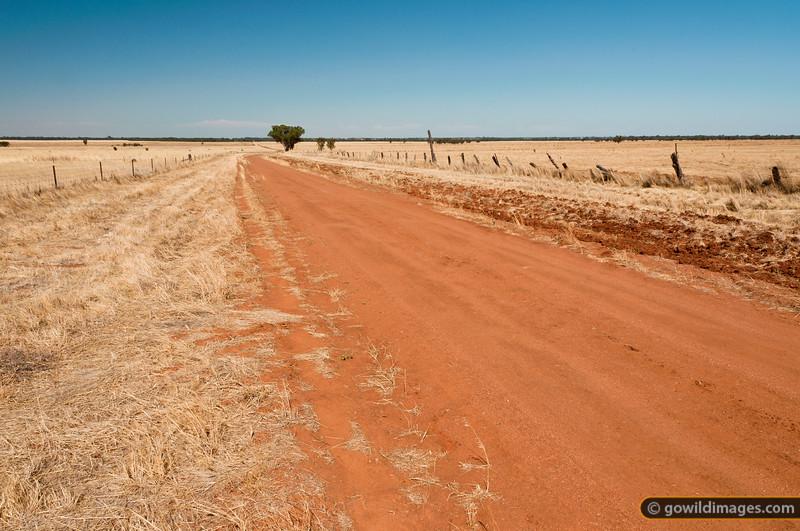 Regals Road, Terrick Terrick NP