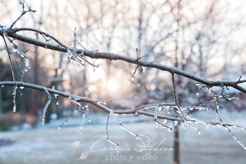 Snowday-8.jpg