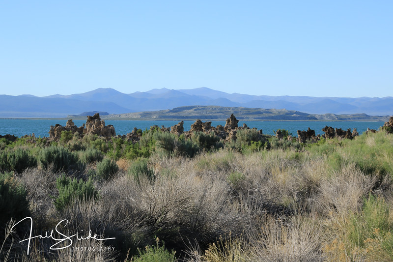 Mono Lake-4.jpg