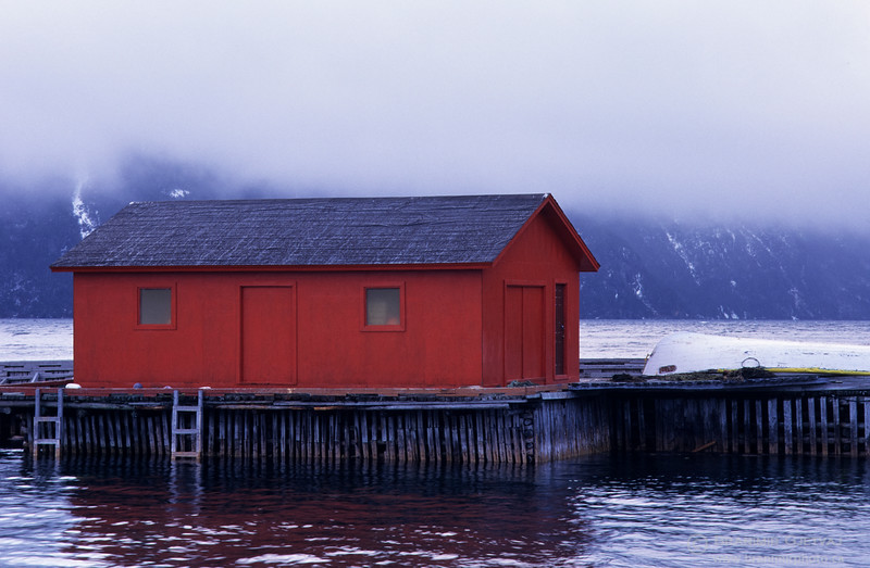 Red fishing shack in fog. Norris Point, Newfoundland