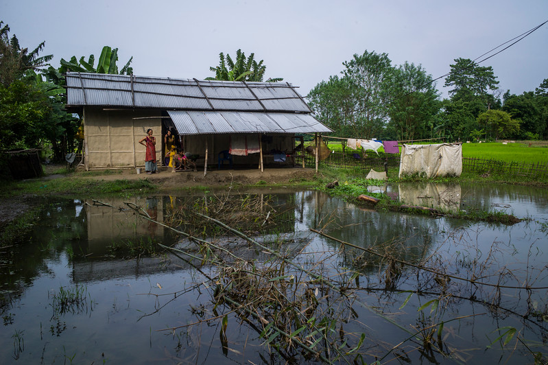 Dhemanji, Assam, India August,2014:   Landscape in Sali Kuchi village during the monsoon / flood season.   Series on early marriages in Assam, India for Al Jazeera America.       Photo:  Sami Siva