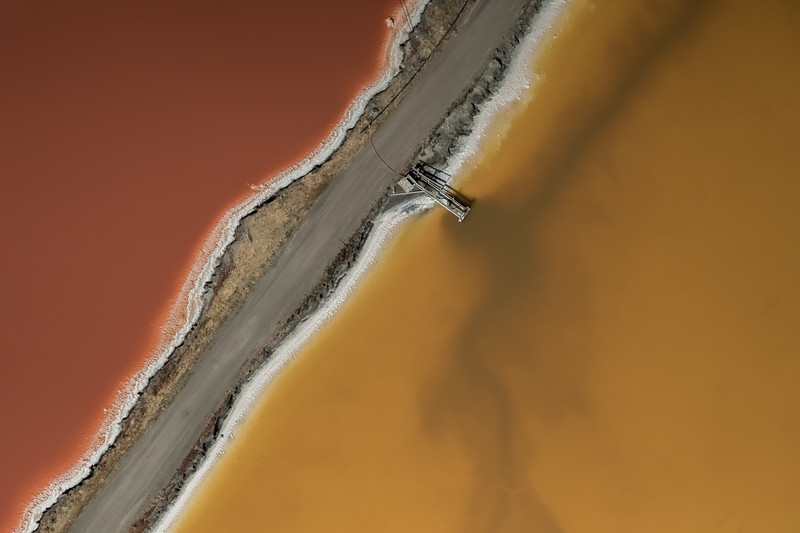Salt Pond #8