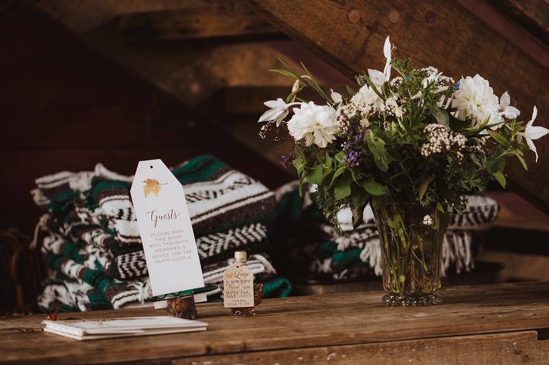 Valley View Farm Bohemian Boho Wedding Western Massachusetts Wedding Photographer 136.jpg
