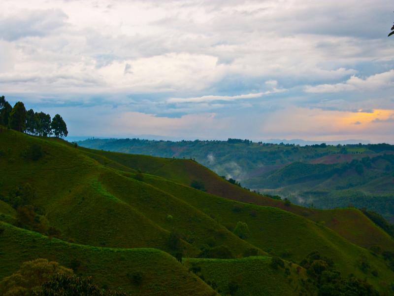rolling green hills of coffee region, salento
