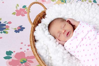 Brittan Newborns