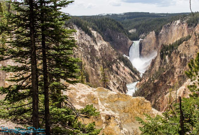 Yellowstone and Grand Tetons NP