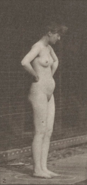 Nude woman striking various poses