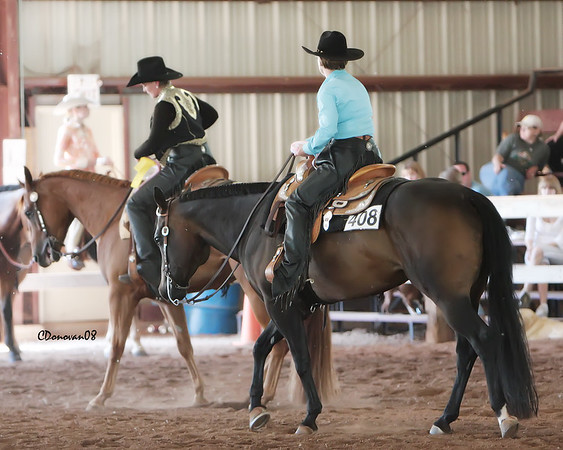 Novice Amateur Horsemanship