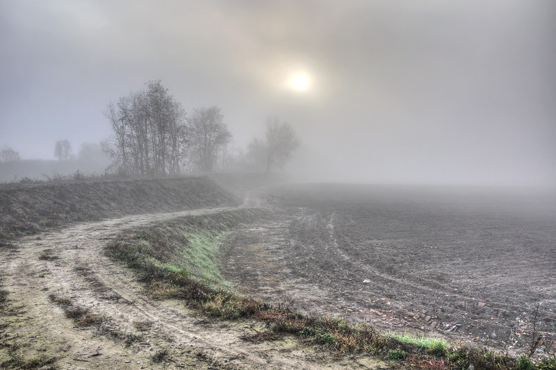 Foggy Sunrise - Sozzigalli, Soliera, Modena, Italy - November 18, 2011