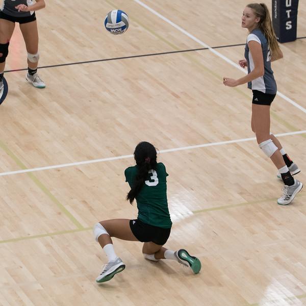 HPU Volleyball-92753.jpg
