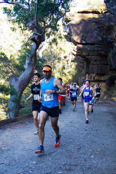 Trail-005.JPG