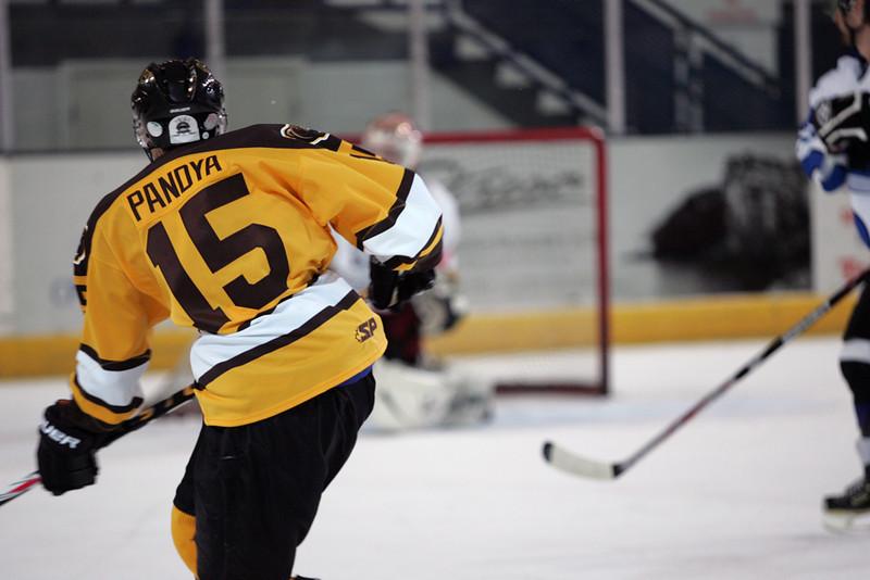 Panthers Vs. Bruins 046.jpg