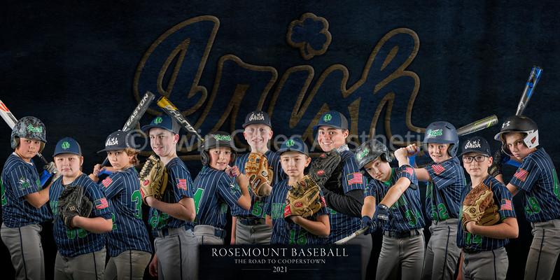 Rosemount AA Baseball