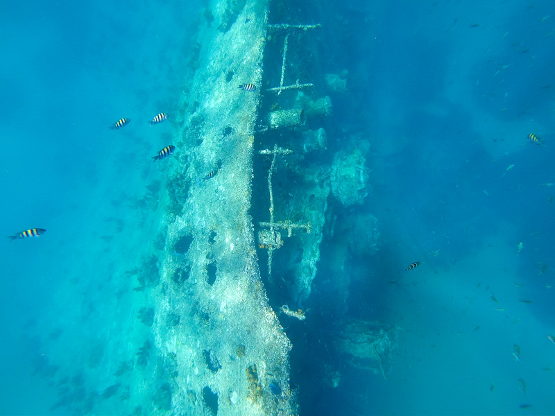 SS Antilla ship wreck in Aruba