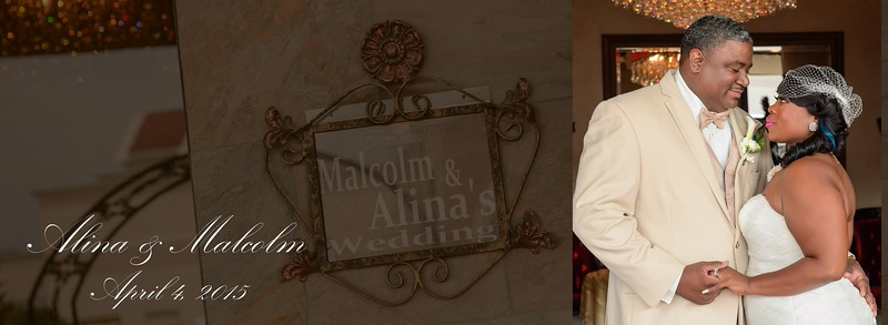 Alina |  Malcolm Wedding Album