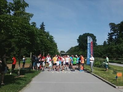 Olomouc 7.6.2015