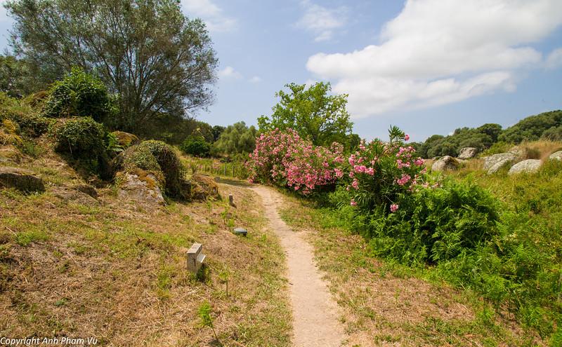 Uploaded - Corsica July 2013 447.jpg
