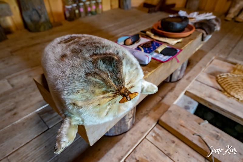 Alaska Native Heritage Center__DSC7319-Juno Kim.jpg