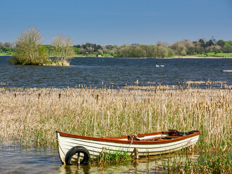 Jonathan Swift Amenity Park at Lilliput on Lough Ennell