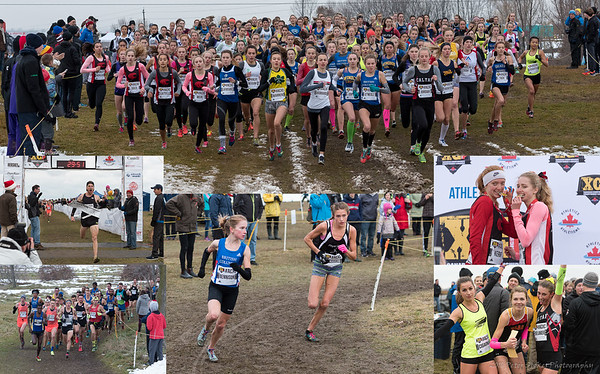 2016 Canadian Cross Country Championships