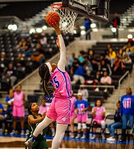 Basketball Lady Panthers