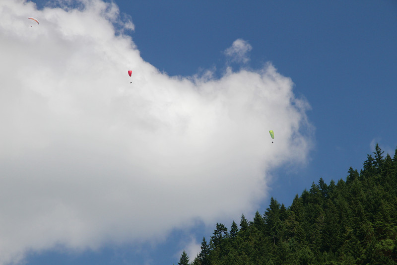 Paragliders on Tiger Mountain