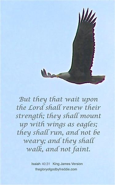 Isaiah 40-39  j .jpg