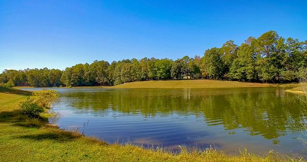 Wildewood Property Lake