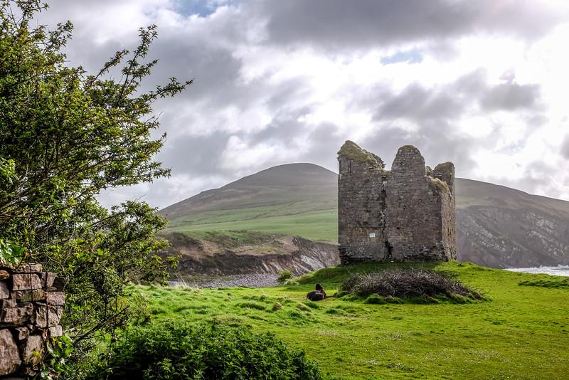 IrelandPIX-2015-2724.jpg