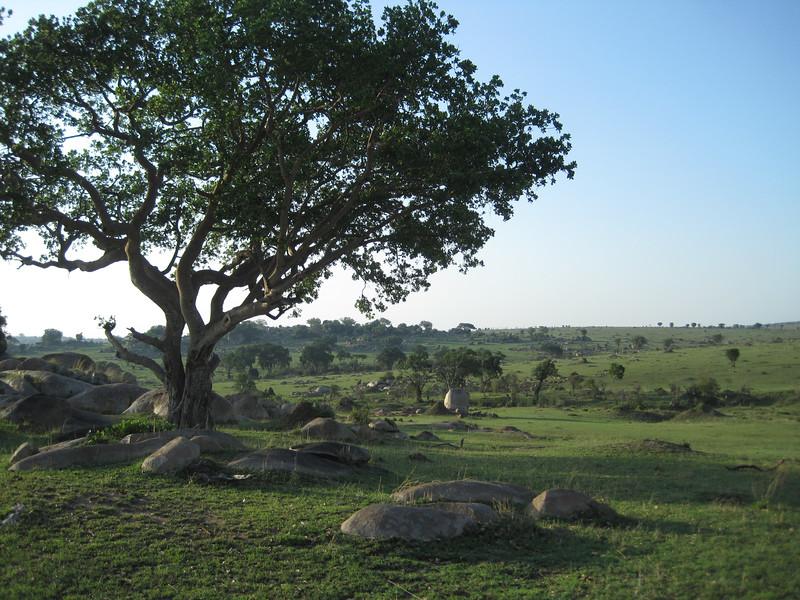 Tanzania14-3781.jpg