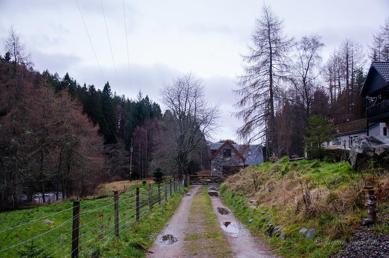 Scotland-Highland-9303.jpg