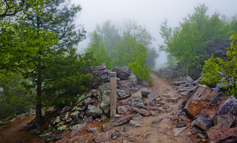 Fog on the Appalachian Trail, on Blackrock Summit, Shenandoah National Park, Virginia.