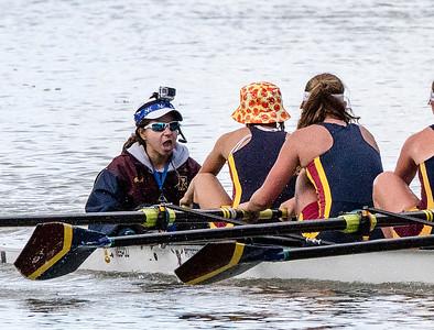 Crew - Rowing