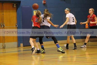 Clinton Girls Basketball 1.24.17