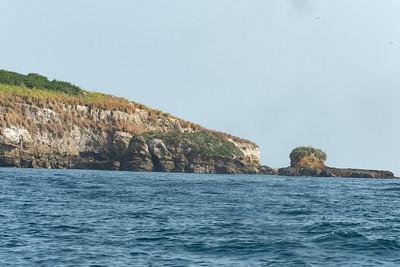 Birds @  Pearl Islands