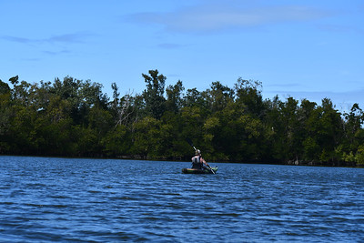 1230PM Heart of Rookery Bay Kayak Tour - Lee, Nguyen, Faucher, Traynor & Menze