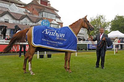 5 Shadwell Arabian Stallion Hatta Int. St. Gr1PA 1m2f