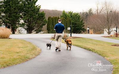 Diamond State Dog Care