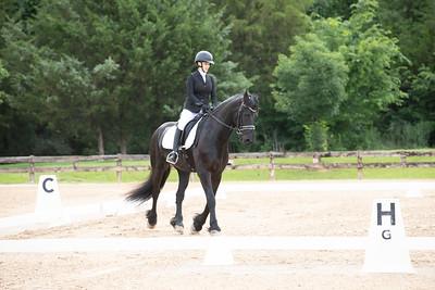 Horse 405