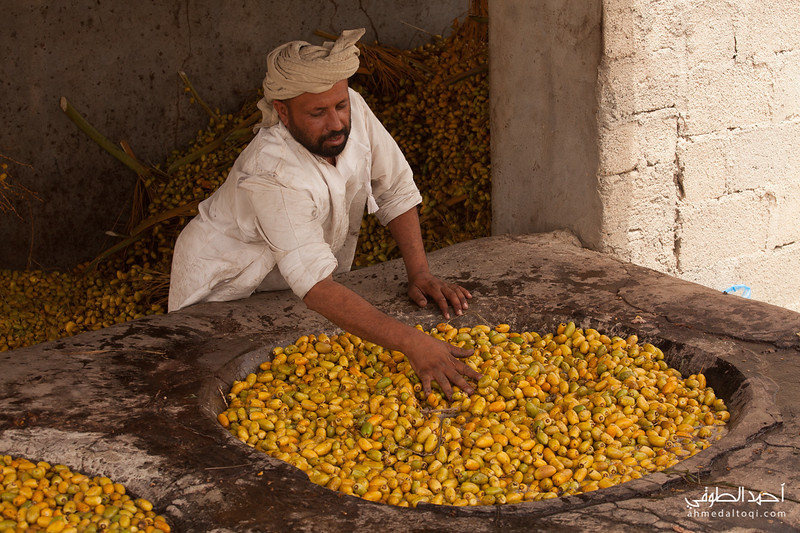 Oman (275).jpg