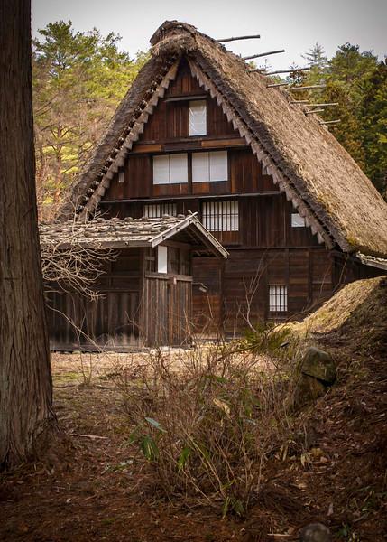 Takayama 280313 6 .jpg