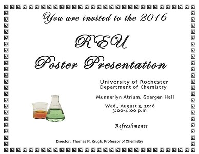 2016 REU Poster Session